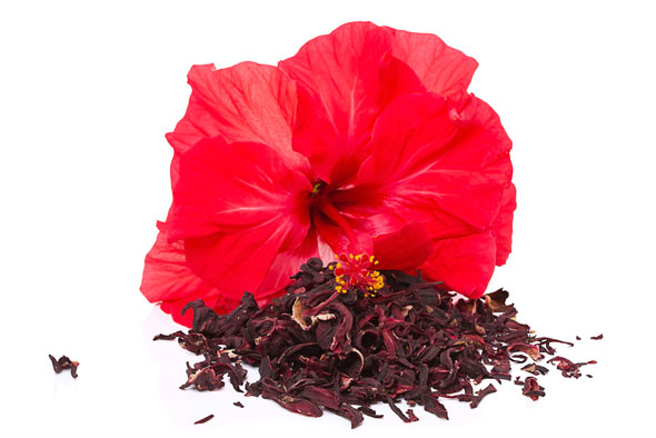 /fr/glossaire/hibiscus-fleurs.html